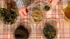 Как приготовить крапивный чай