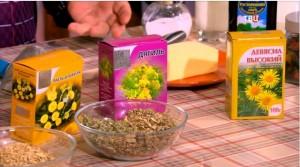 Травяной чай от простуды: мать-и-мачеха, корень девясила и дягеля