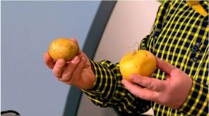 В 19 веке репу заменили картофелем