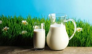 Лечение молоком