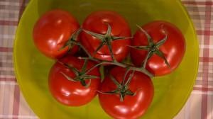 Отвар из стеблей томатов – чтобы отогнать комаров