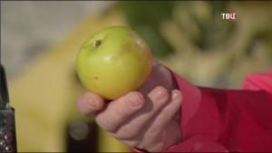 Яблоки помогут от многих болезней