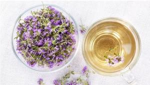 Чай из чабреца, или тимьяновый чай поможет при рахите