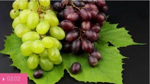 Виноград – мой друг сердечный!
