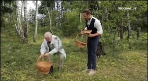 Пора в лес – за грибным лекарством