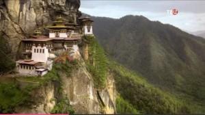 На Тибете барбарис использовали для продления молодости