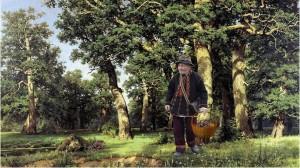 На Руси знахари всегда заготавливали корни целебных растений
