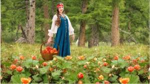 Если осенью в лесок заведёт дорожка, заберётся в туесок спелая морошка