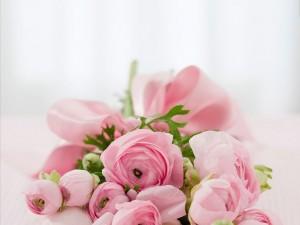Розы любви и благодарности – для этнотравника