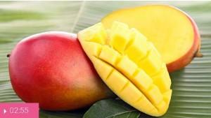 Манго – священный фрукт из Индии