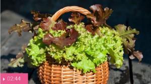 Салат от бессонницы
