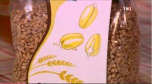 Полба богаче пшеницы