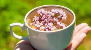 Чай с душицей – поможет от бессонницы