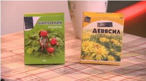 Корни шиповника и девясила – от авитаминоза