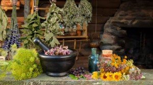 Лекарственные травы от псориаза
