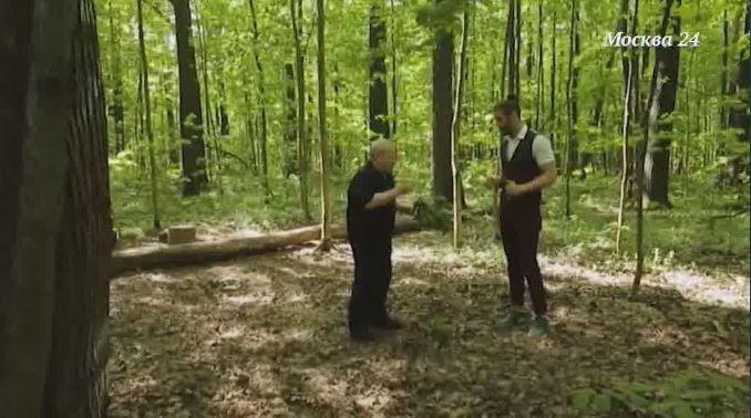 В лес – от аллергии