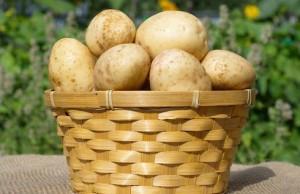 Картошка – средство от изжоги