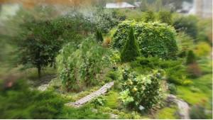 Монастырские сады