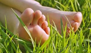 Елеи из трав – для здоровья ног