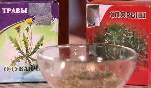 Травы при холецистите