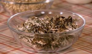 Исландский мох – средство от кашля