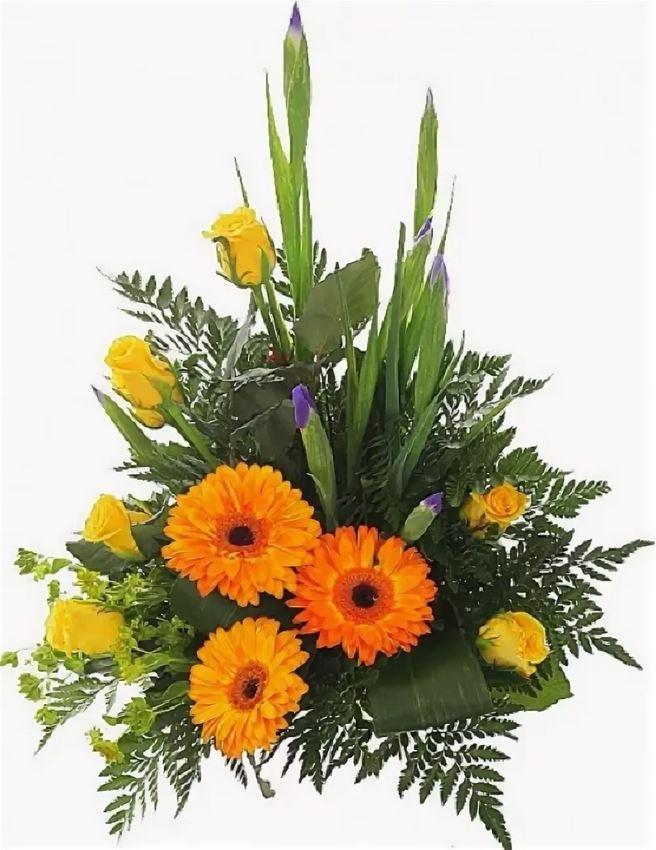 Картинки цветов для мужчин на день рождения