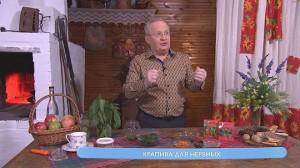 Рецепты для здоровья этнотраника Фадеева
