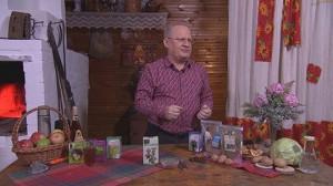 Рецепты травников при язве желудка