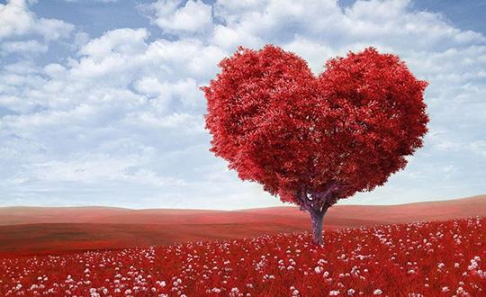 Лекарство для любви – Спешу поделиться!